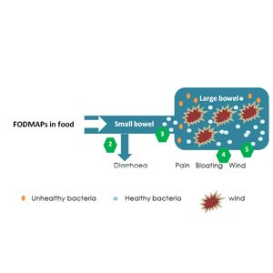 What are FODMAPs